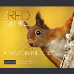 The Red Squirrel: A future in the forest