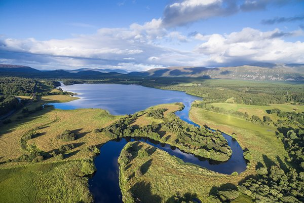 Use your money to support a wilder Scotland