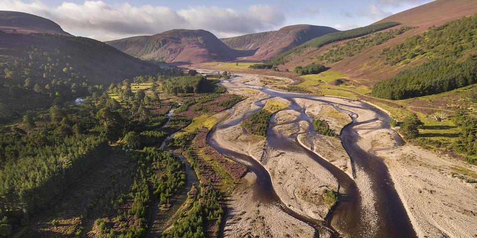 Rewilding Explorer: Highlands Summer image