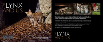 Lynx-book-cover-dps.jpg