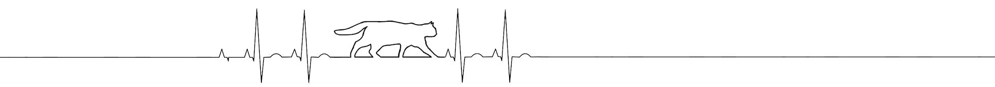 Heartbeat wildcat