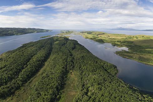 Rewilding Retreat: Cairngorms to Coast image