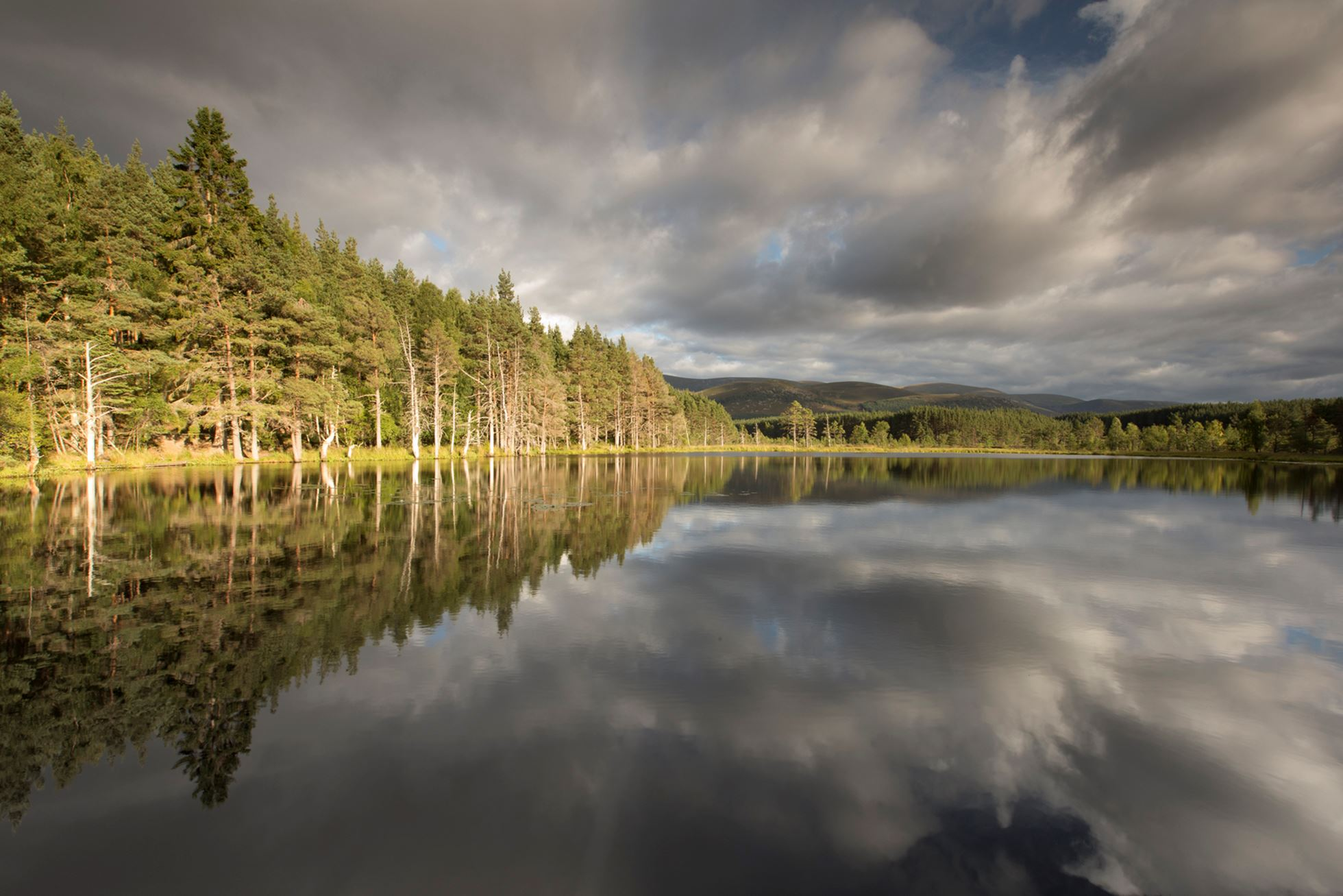 Uath Lochans in evening light, Glenfeshie, Scotland.