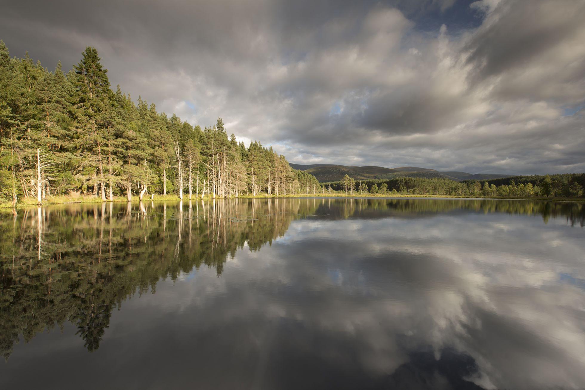 Uath Lochans in evening light, Glenfeshie, Scotland.