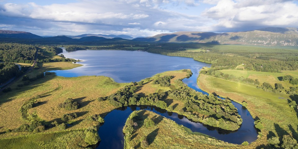 Wilderness Weekend: Cairngorms Connect image