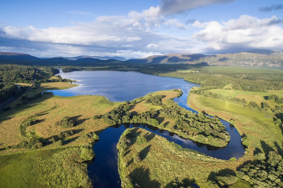 Wilderness Weekend: Cairngorms Connect - Rewilding Retreat - Discover the story of the UK's largest landscape scale restoration project.
