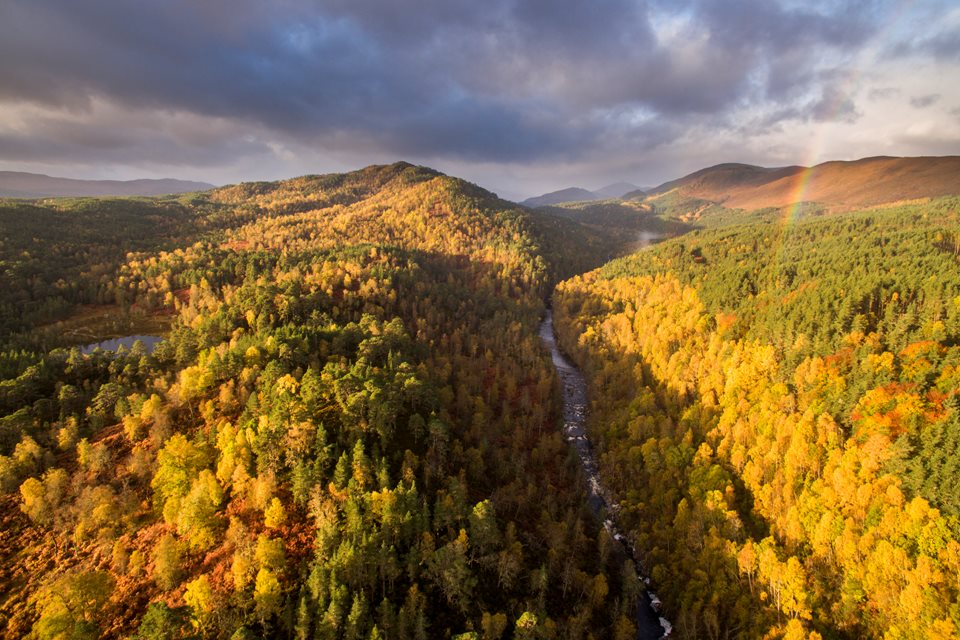 Rewilding Explorer: Autumn  - Rewilding Retreat - A journey of rewilding across the spectacular Scottish Highlands