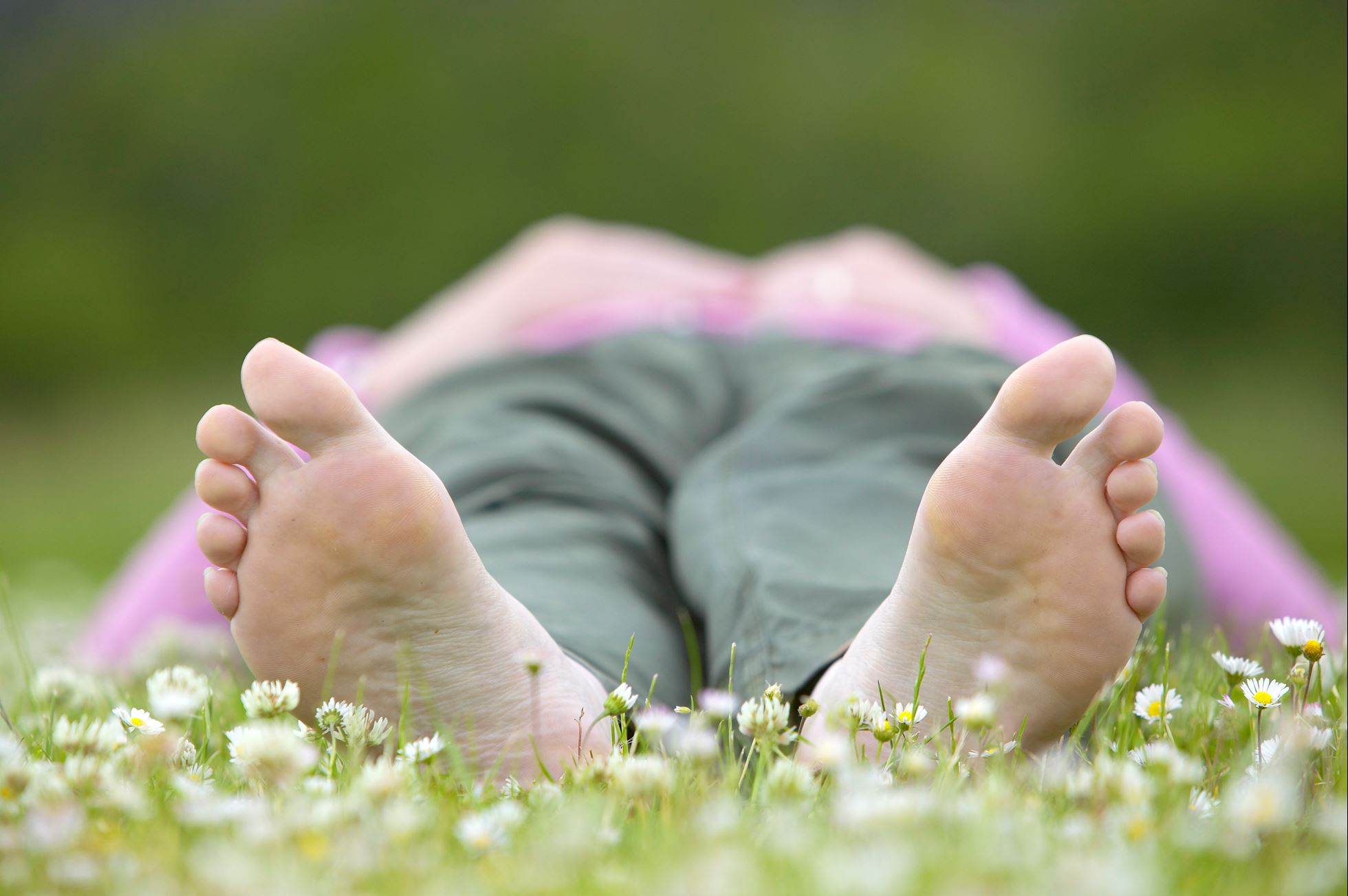 Woman lying in field of daisies reading a book on a summer day, Cairngorms National Park, Scotland
