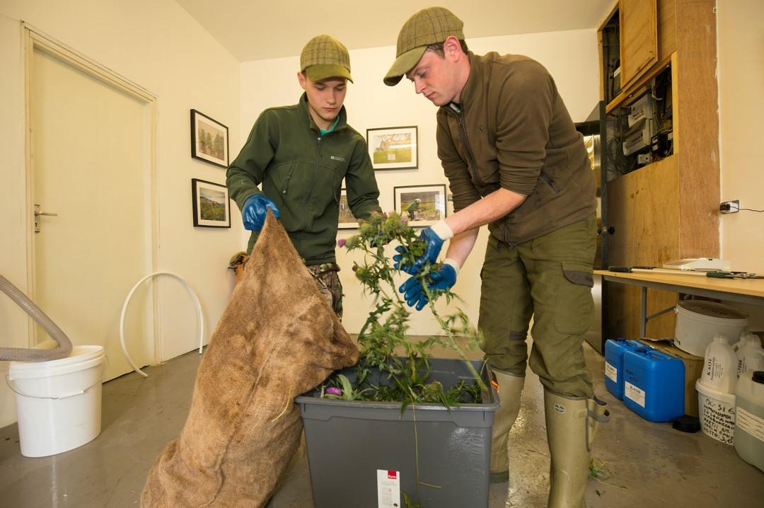 <p>Neil and Ryan, two of Alladale&rsquo;s young rangers collect local plants like spear thistle that are blended into natural soaps and beauty products.</p>