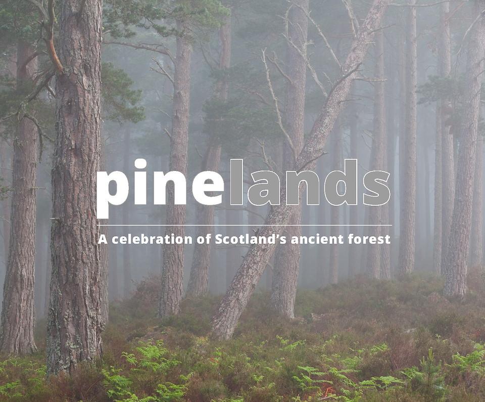 Pinelands ebook
