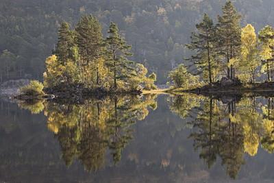 Autumn reflections in Loch Beinn a Mheadhoin, Glen Affric, Scotland.