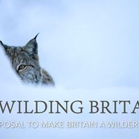 TBP produces Rewilding Britain brochure