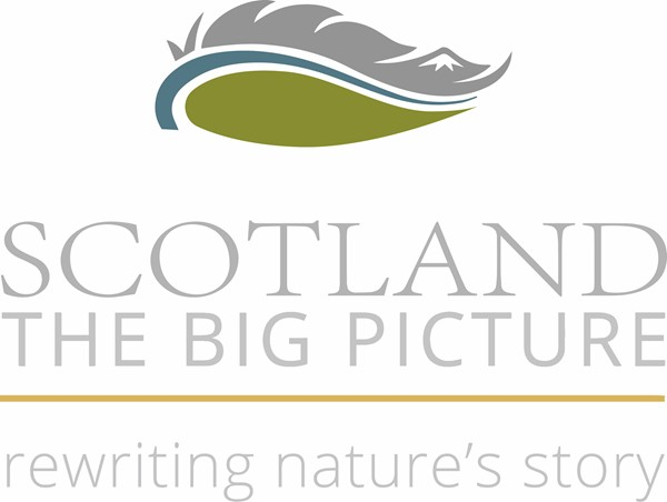 SCOTLAND: The Big Picture logo