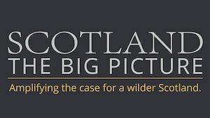 SCOTLAND: The Big Picture